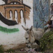 L'eterna emergenza dei profughi palestinesi in Libano