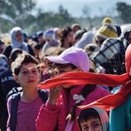 Quanti minori stranieri non accompagnati hanno fatto domanda di asilo in Europa?
