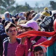 Oltre 664 mila minori hanno chiesto asilo in Ue: serve un piano d'azione